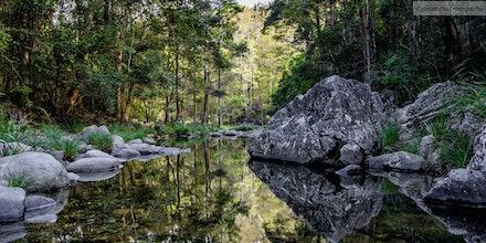 Stony Creek Reflections