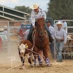 Wagga Wagga APRA Rodeo 2018 - Slack Session