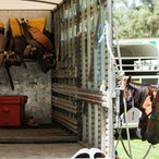 Picton Rodeo 2015