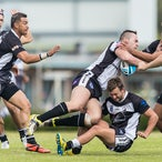 Asquith Magpies v Narrabeen Sharks  300417 - A Grade clash won 28-10 by Narrabeen