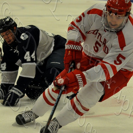Mens Ice Hockey vs Geneseo (11/6/2015)