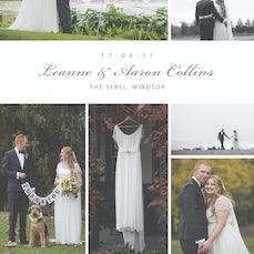 Collins Wedding (2017)