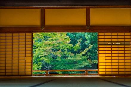 5 - Kyoto, Japan