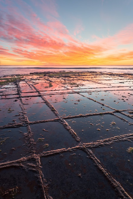 Tessellation II - Tessellated Pavement, Eaglehawk Neck, Tasmania