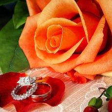 Weddings - Wedding Samples