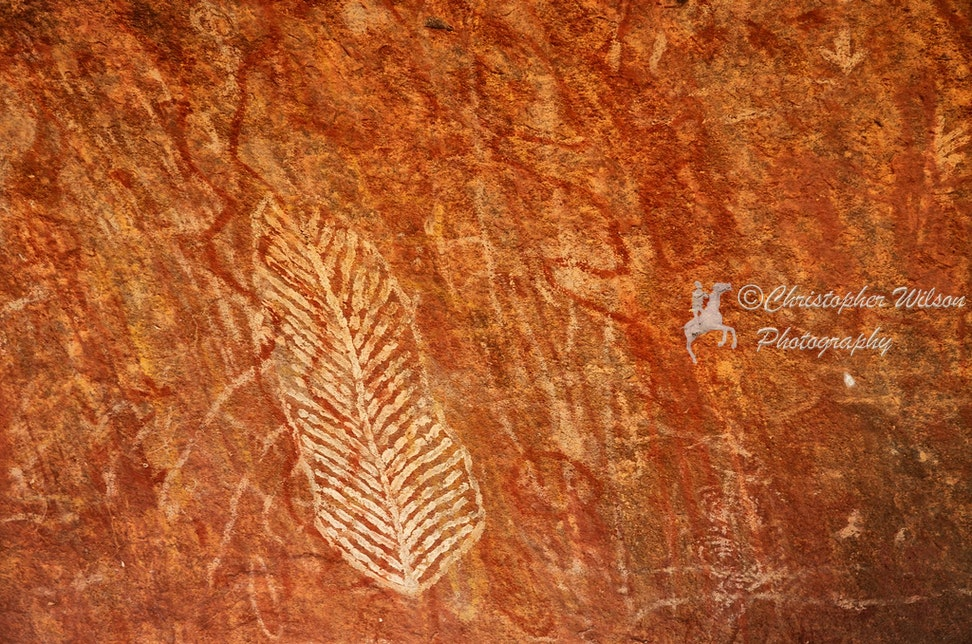 Uluru and Surrounds 027