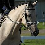 Watagan Equestrian Club Dressage - Watagan Equestrian Dressage Sunday March 25th 2012