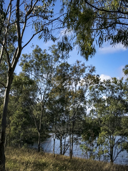 Towards the Dam 2 - Brilliant blue skies of early winter in southeast Queensland.