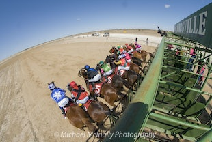 Birdsville Racing Carnival 2015 - Photos taken by Michael McInally