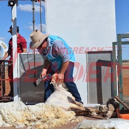 170526_DSC_0818 - Action at the 2017 Isisford Sheep and Wool Show