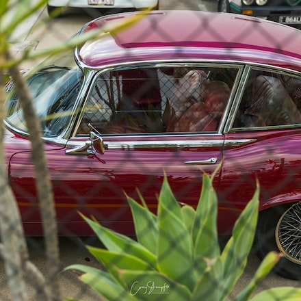 Stampfli Photography_Cars & Coffee-6